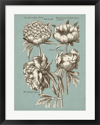 Framed Chambray Chintz II Print