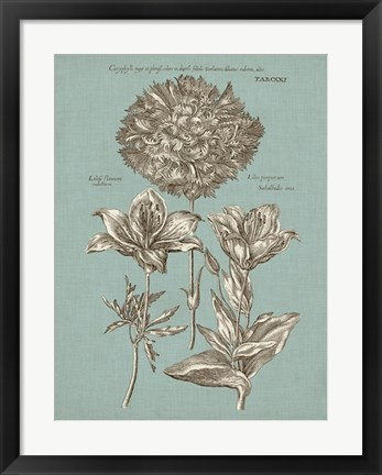 Framed Chambray Chintz IV Print
