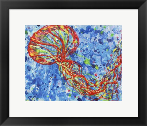 Framed Orange Sea Nettle Print