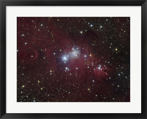 Framed NGC 2264 region showing the Cone Nebula, Christmas Tree Cluster, and Fox Fur Nebula Print