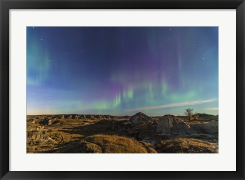 Framed Aurora borealis over the badlands of Dinosaur Provincial Park, Canada Print