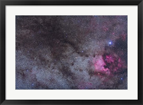 Framed North America Nebula and dark nebulae in Cygnus Print