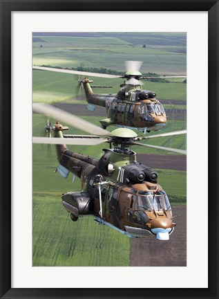 Framed Pair of Bulgarian Air Force Eurocopter AS532 AL Cougar helicopters Print