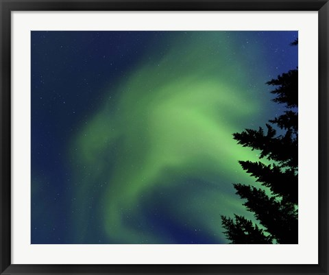 Framed Aurora Borealis in Troms County, Norway Print