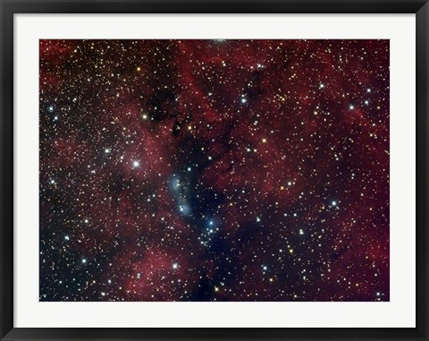 Framed NGC 6914, reflection nebula in Cygnus Print