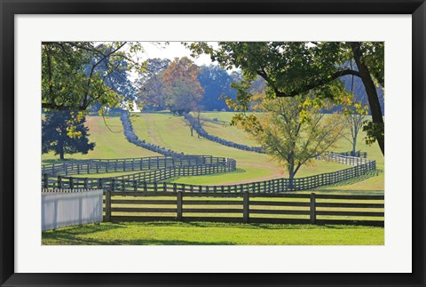 Framed Stacked Split-Rail Fences in Appomattox, Virginia Print