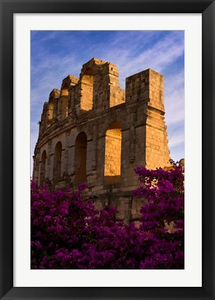 Framed Ancient Roman Amphitheater with flowers, El Jem, Tunisia Print