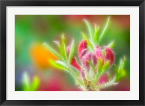 Framed Abstract close Print