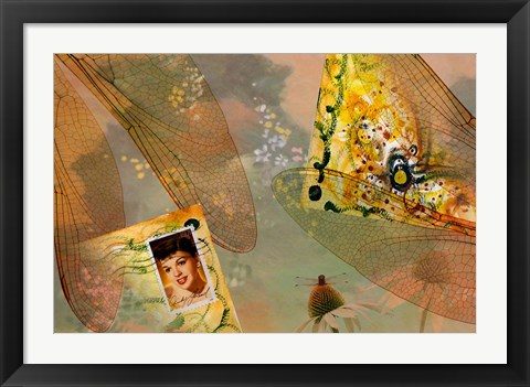 Framed Artistic abstract of dragonfly wings and envelope. Print