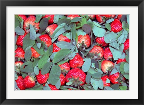 Framed China, Chongqing, Strawberries in fruit market Print