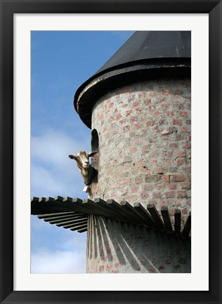 Framed Fairview winery, goat tower, Paarl, South Africa Print