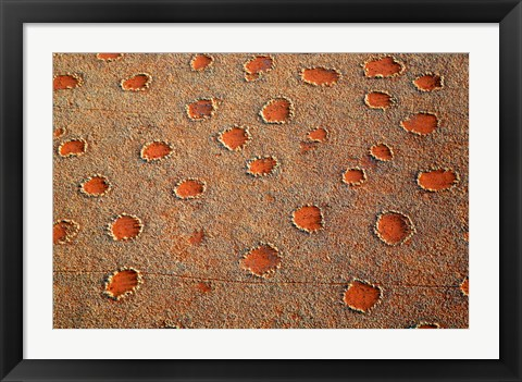 Framed Fairy circles dotting the landscape of the Namib-Rand Nature Reserve, Sossusvlei, Nambia Print