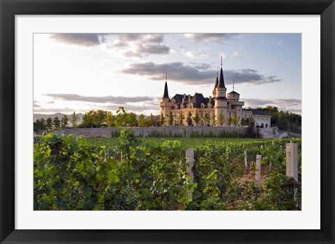 Framed Chateau Changyu AFIP Global winery, Ju Gezhuang Town, China Print