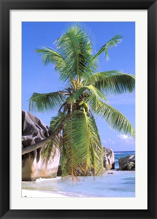 Framed Granite Outcrops, La Digue Island, Seychelles, Africa Print