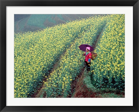 Framed Chinese Woman Walking in Field of Rapeseed near Ping' an Village, Li River, China Print