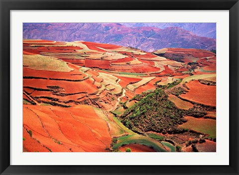 Framed China, Yunnan, Tilled Red Laterite, Agriculture Print