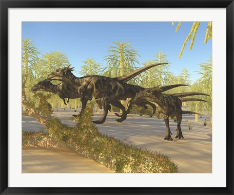 Framed herd of Dracorex dinosaurs walk through a carboniferous forest Print