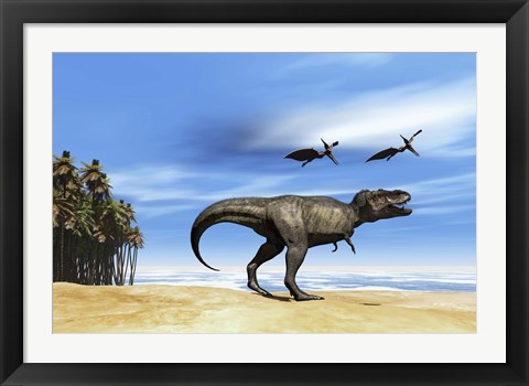 Framed Pterodactyls fly over a beastly Tyrannosaurus Rex Print