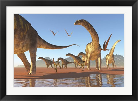 Framed Two Deinocheirus move along with a herd of Argentinosaurus Print