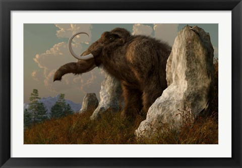 Framed mammoth standing among stones on a hillside Print