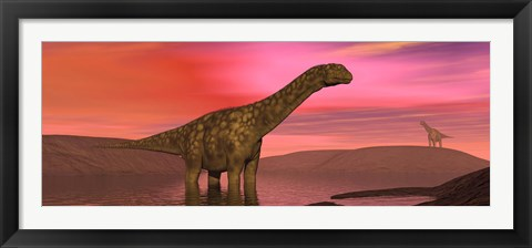 Framed Argentinosaurus dinosaurs amongst a colorful red sunset Print