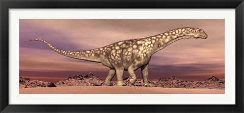Framed Large Argentinosaurus dinosaur walking in the desert Print