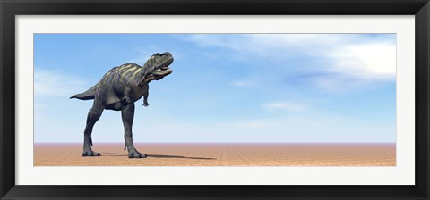 Framed Large Aucasaurus dinosaur standing in the desert Print