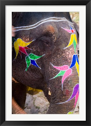 Framed Elephant at Amber Fort, Rajasthan, Jaipur, India Print