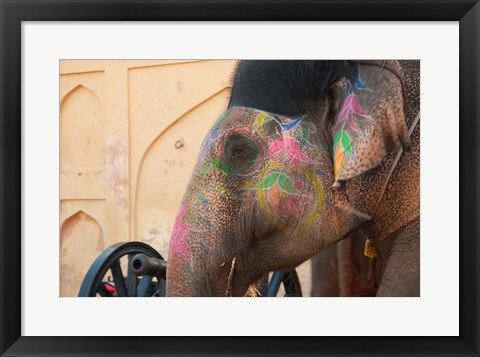 Framed Decorated elephant at the Amber Fort, Jaipur, Rajasthan, India. Print