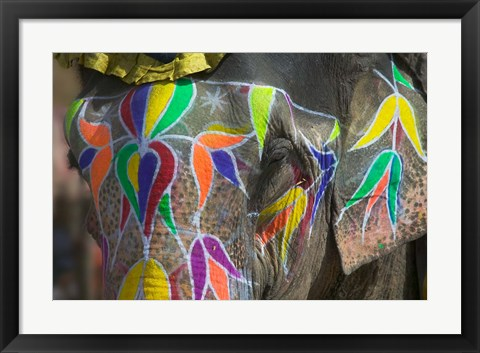 Framed Elephant Decorated with Colorful Painting, Jaipur, Rajasthan, India Print
