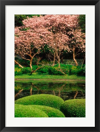 Framed Reflecting Pond, Imperial Palace East Gardens, Tokyo, Japan Print