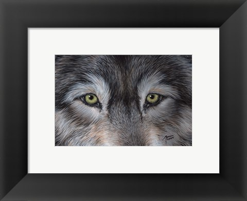 Framed Eyes of the Wolf Print