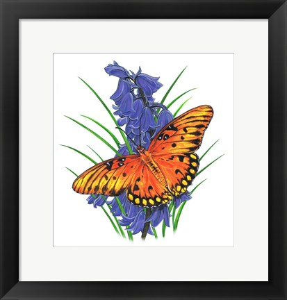 Framed Brilliant Eye Jewel Butterfly-II Print