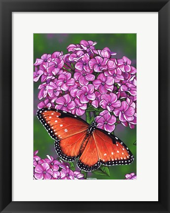 Framed Queen Butterfly Print