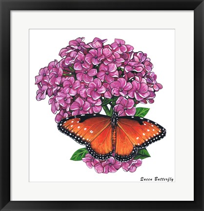 Framed Queen Butterfly II Print