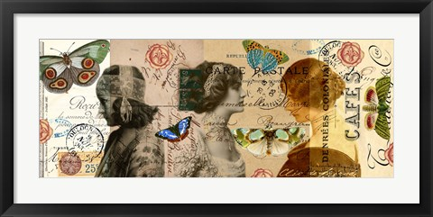 Framed Butterfly Beauties Print