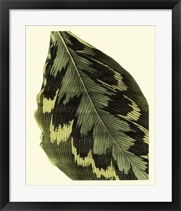 Framed Grandiose Leaves I Print