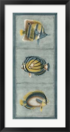 Framed Tropical Fish Trio I Print