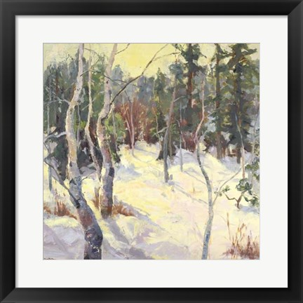 Framed Four Seasons Aspens IV Print