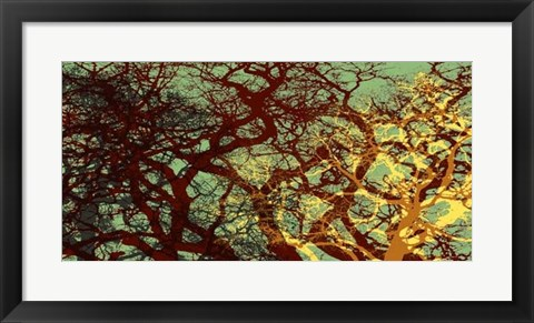 Framed Entangle I Print