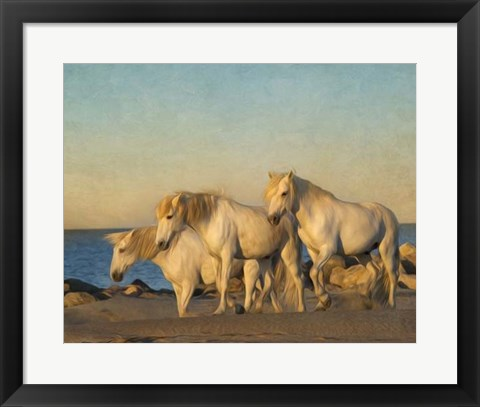 Framed On the Beach Print