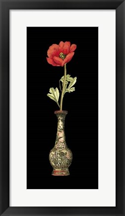 Framed Poppy Magic II Print