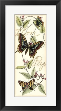 Framed Butterfly Flight I Print