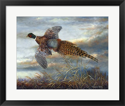 Framed Taking Flight Print