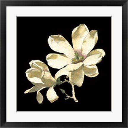 Framed Midnight Magnolias I Print