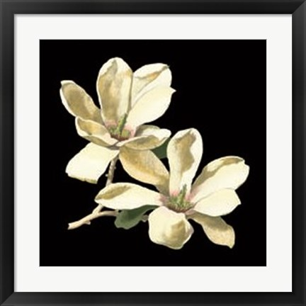 Framed Midnight Magnolias II Print