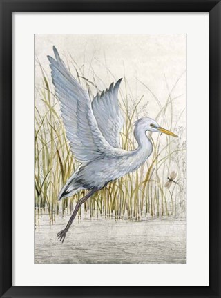 Framed Heron Sanctuary I Print