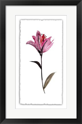Framed Floral Watercolor II Print