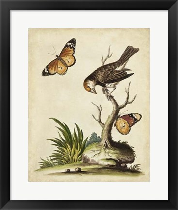 Framed Companions in Nature II Print