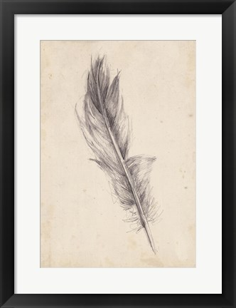 Framed Feather Sketch IV Print